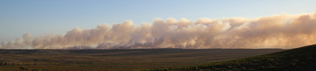 Fire at Cape Point Nature Reserve